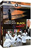African Americans and Black in Latin America [DVD] [Import] 画像