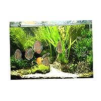 SM SunniMix 全6サイズ 水槽 水族館 魚タンク バックグラウンド 装飾 背景 3D効果 ポスター 雰囲気を作り出し - XS