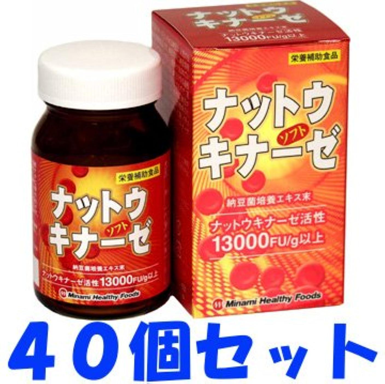 健康歴史的ハッピー【ケース販売】ナットウキナーゼソフト 90球×40個セット