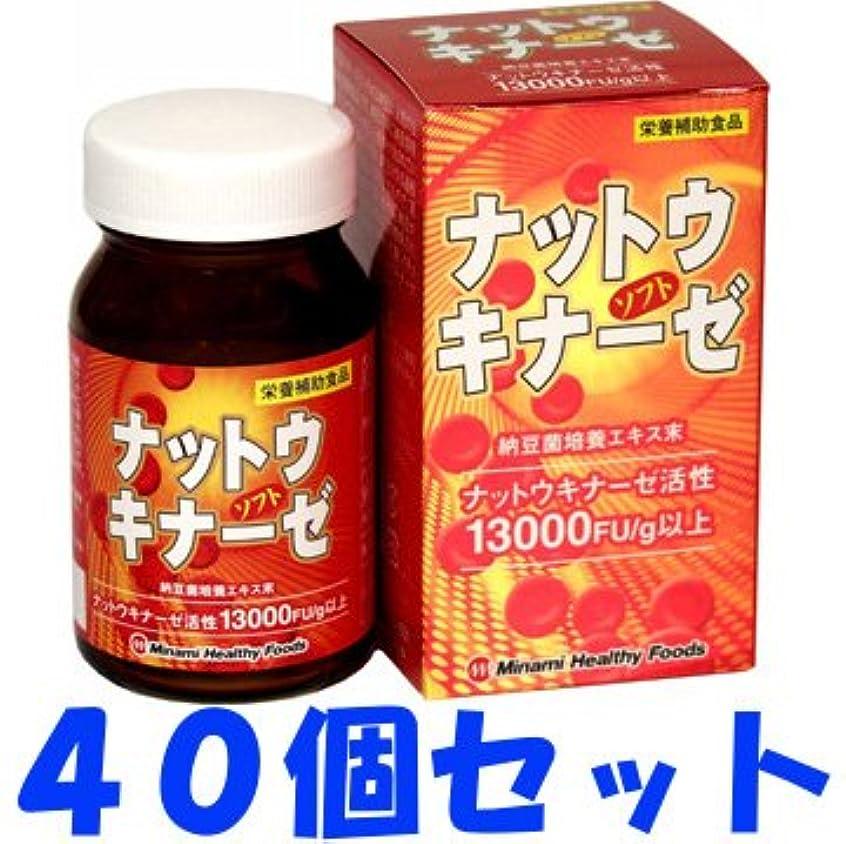 弱点アーチロック【ケース販売】ナットウキナーゼソフト 90球×40個セット