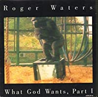 """What God Wants, Part I - Roger Waters 7"""" 45"""