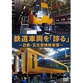 鉄道車両を「診る」 ~近鉄・五位堂検修車庫~ [DVD]
