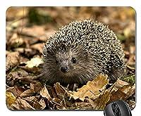 Hedgehog Leaves Fallマウスパッドアンチスリップデスクトップマウスパッドゲーミングマウスパッド