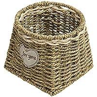貯蔵のギフトのバスケットの藤の花の挿入物の緑の植物の鍋の肉箱の節約 (サイズ さいず : A)