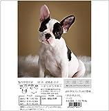 犬服工房 型紙  3種ハイネックラグランスリーブTシャツ 超大きなフレブルF3XL〜F5XL
