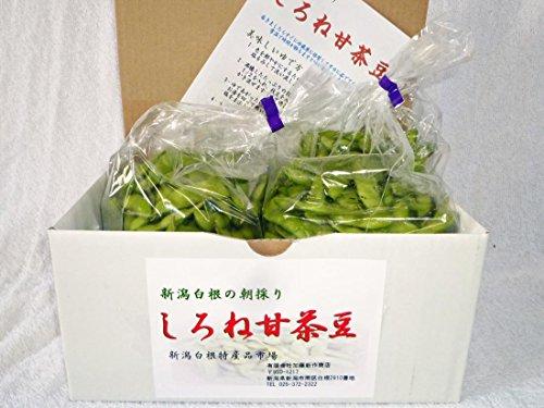 新潟しろねの朝採り茶豆 しろね甘茶豆 2kg 8月22日発送予定