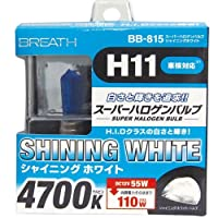 ベイテックス スーパーハロゲンバルブ H11 シャイニングWH4700K BB-815(2個入)