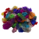 約50pcs 染めニューギニア羽根  装飾用の羽根 2.5 - 10cm DIY ジュエリー/工芸品/ヘアアクセサリー 混合色