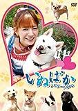 映画「いぬばか」ナビゲートDVD[DVD]