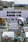 震災津波の爪痕 気仙沼編 (中巻)