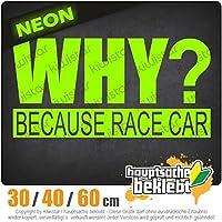 Why Because Race Car - 3つのサイズで利用できます 15色 - ネオン+クロム! ステッカービニールオートバイ