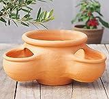 植木鉢 ストロベリーポット P937M おしゃれ テラコッタ 素焼き鉢