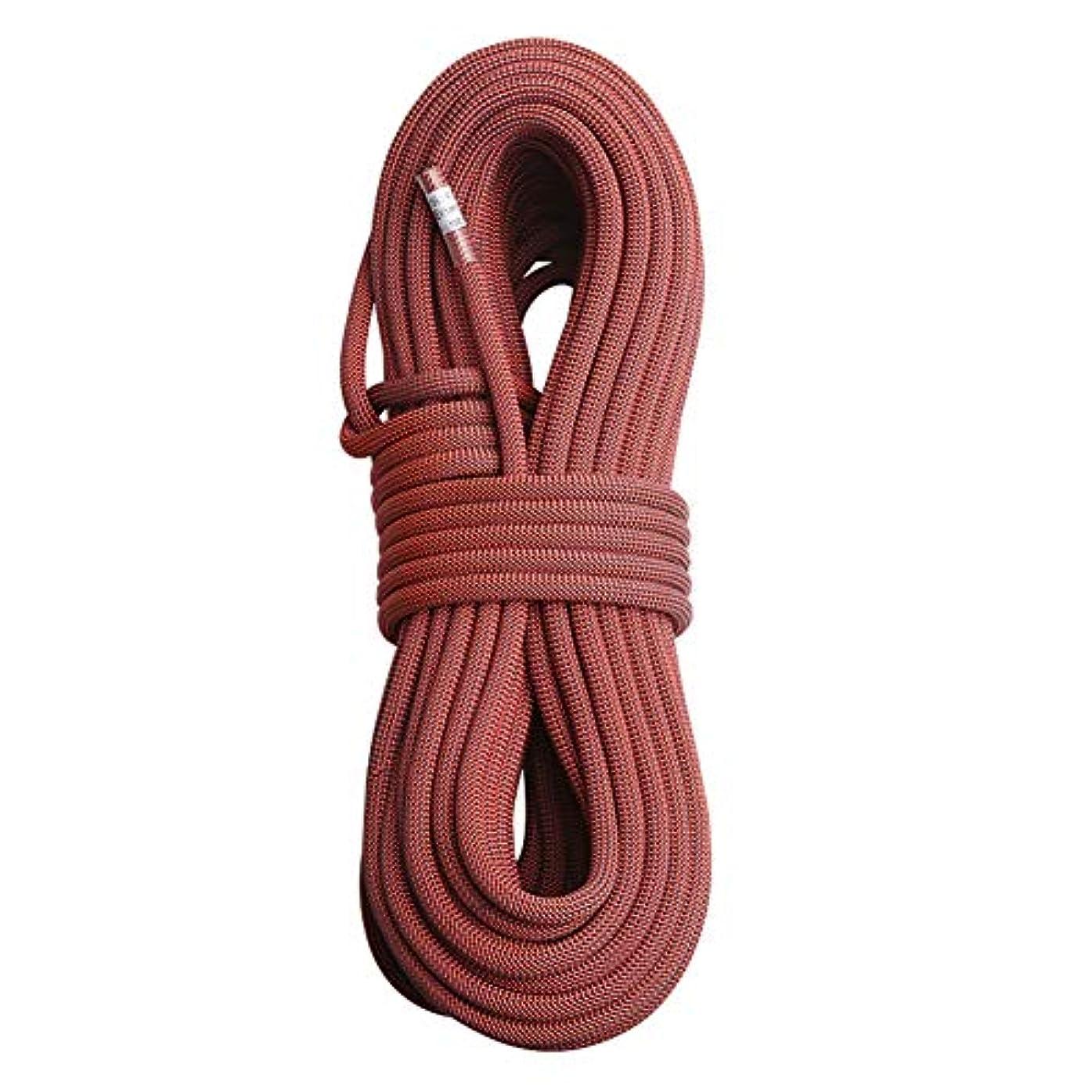 懲らしめアサートダム屋外ロッククライミングロープ、10.5 mm直径高強度安全コード緊急火災エスケープ救助急行コード(5 m、10 m、15 m、20 m),Darkred,15m