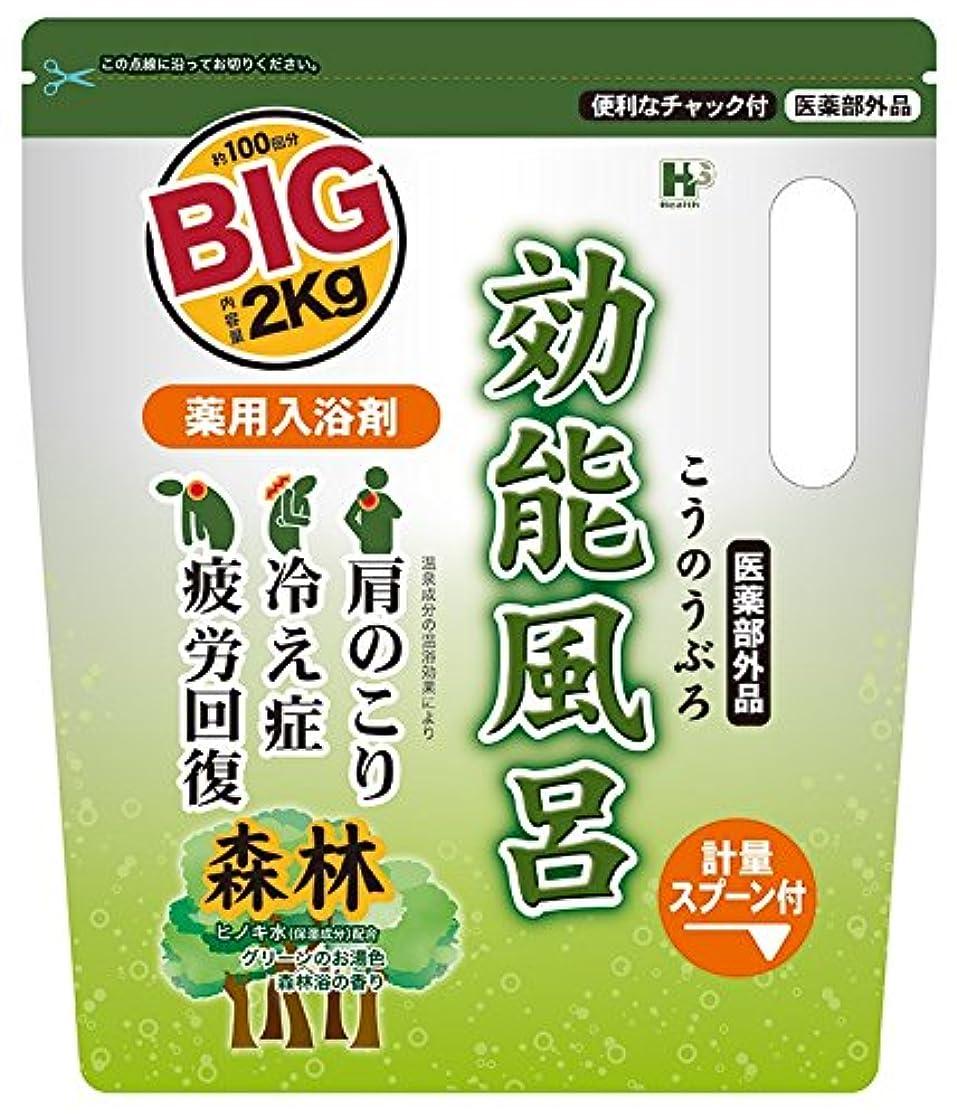 リアル下品袋薬用入浴剤 効能風呂 森林の香り BIGサイズ 2kg [医薬部外品]