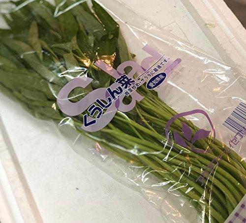 808青果店 愛知県・岐阜県産 空心菜 低農薬・特別栽培農産物