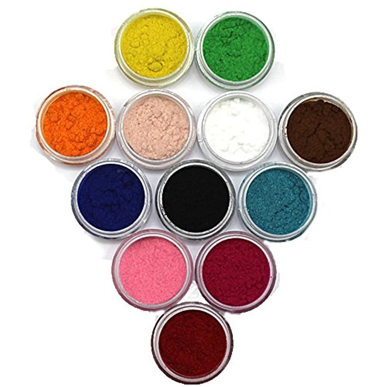 有彩色のしつけ大量フロッキーパウダー 大きめケース(直径3cm)入り 12個/セット