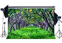 gladbuy 9x 6ftビニール写真バックドロップ素朴なFarmlandフルーツツリーGrass Field Nature Backdropsベビー子供大人用背景写真スタジオ小道具xm287