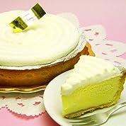 ニューヨークチーズ5号[誕生日に、お祝いに、本格チーズケーキのパーティーサイズ]