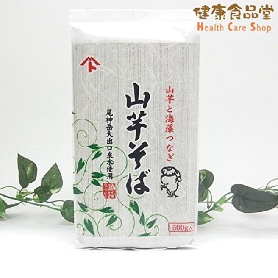 桁レール立方体創健社 山芋そば 500g