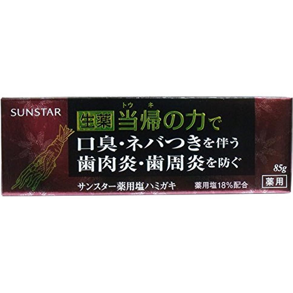 広くマット色【まとめ買い】サンスター 薬用 ハミガキ 生薬 当帰の力 85g ×2セット