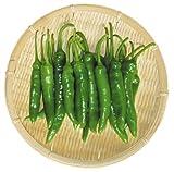 韓国産 青唐辛子 500g
