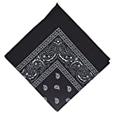 50% off - National Cotton Paisley Bandana Double Side Head Wrap Scarf Wristband Neckerchief by Boolavard