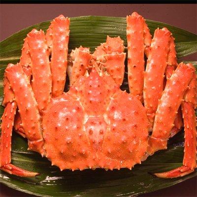 たらば蟹 タラバガニ 姿【最高級 特4級】 姿 1.6kg前...
