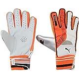 Puma, Cricket, Evo Indoor Batting Gloves, , White