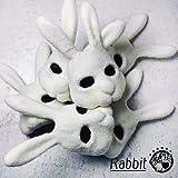ドーナツスポット / Rabbit