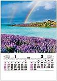 トーダン 2022年 カレンダー 壁掛け トーハン・DX世界の情景 フイルム TD-522