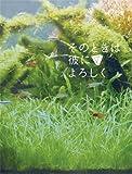 そのときは彼によろしく スペシャル・エディション(2枚組) [DVD]