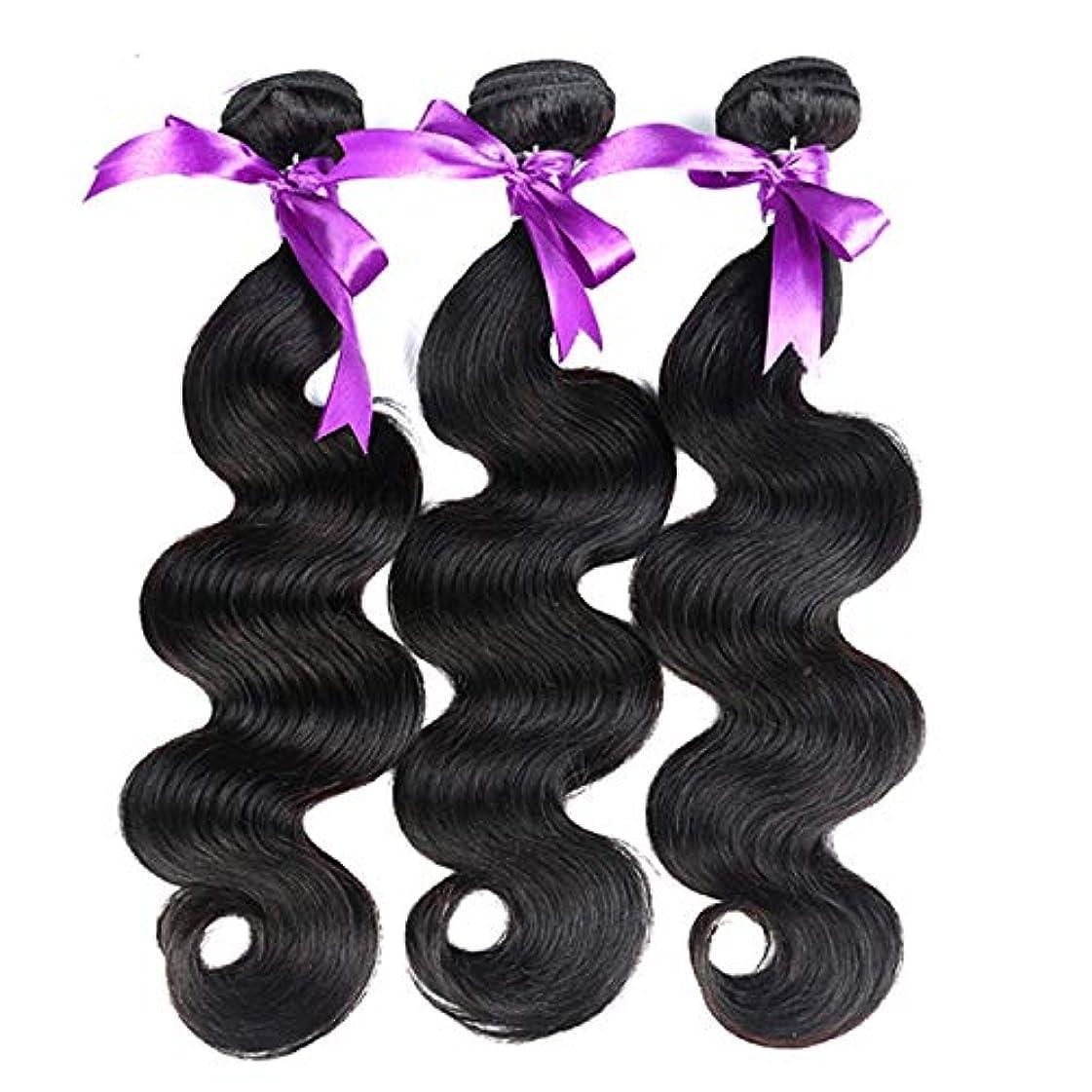 オートマトン季節にやにやかつら 髪マレーシア実体波髪3個人間の髪の束非レミーの毛延長8-28インチの体毛かつら (Length : 12 14 16)
