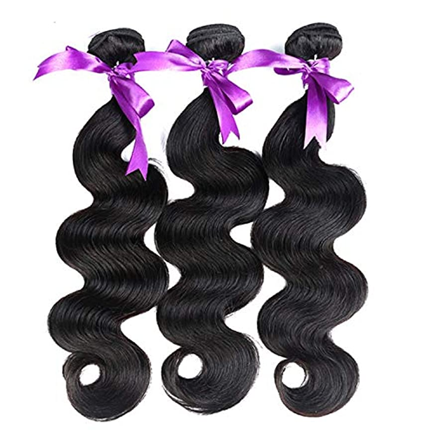 若い代表団権限髪マレーシア実体波髪3個人間の髪の束非レミーの毛延長8-28インチの体毛かつら (Length : 8 8 10)