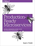 Production-Ready Microservices: Building Standardized Systems Across an Engineering Organization (English Edition)