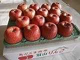 菅野アップル農園 サンふじ とっても甘い ふじりんご 福島県羽山産 産地直送 大きめ 2Lサイズ 10kg