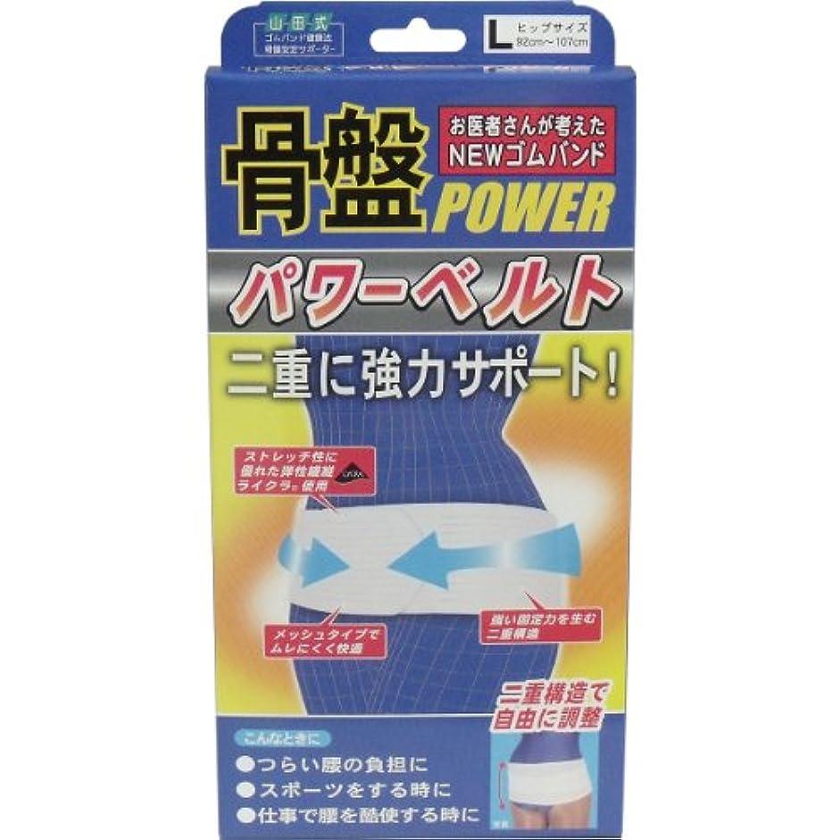 NEWゴムバンド 骨盤パワーベルト 強力二重構造 Lサイズ【5個セット】