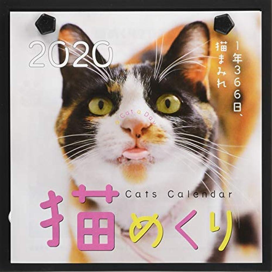 書道内向きレシピシーオーツー 猫めくり 2020年 カレンダー 日めくり CK-C20-01