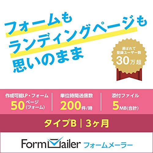フォームメーラー Business タイプB【LP(フォーム)作成数:50ページ(個)/月】3ヶ月|...