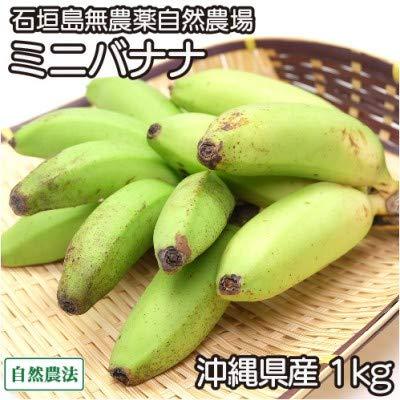 ミニバナナ 1kg 自然農法 (沖縄県 石垣島無農薬自然農場) 産地直送 ふるさと21