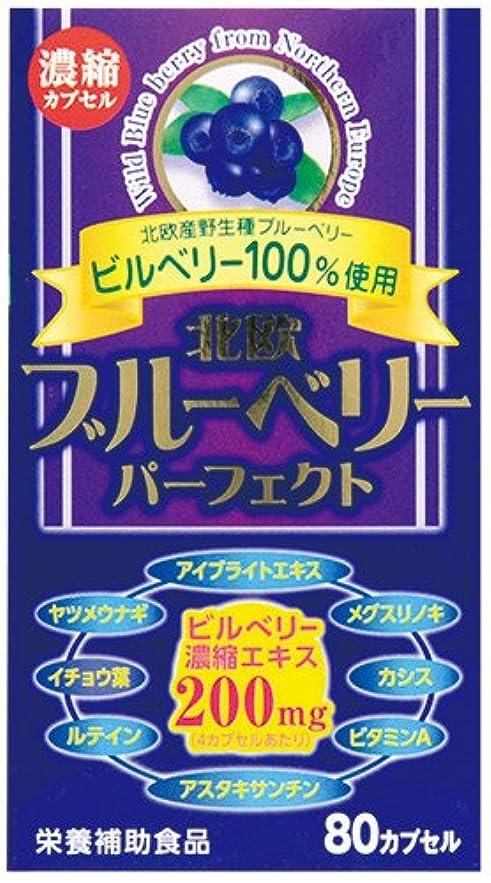 探偵ブラウザ重要【ウエルネスジャパン】北欧ブルーベリー パーフェクト 80カプセル ×3個セット
