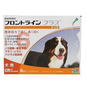 メリアル 犬用フロントラインプラス XL 6P (動物用医薬品)