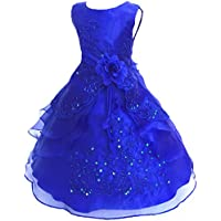 Shiny Toddler Little/Big Girls Embroidered Beaded Flower Girl Flower Girl Birthday Party Christmas Dress-Up with Petticoat