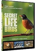 Secret Life of Birds: 5 Part Series [DVD] [Import]