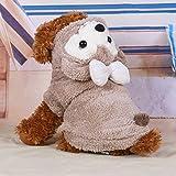 BXL パーカー 犬服 冬服 コスチューム ベアー おしゃれ かわいい わんちゃん 秋冬モデル 高品質 あったか ドッグウェア (M, ガール)
