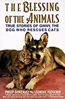 The Blessing of the Animals: True Stories of Ginny the Dog Who Rescues Cats【洋書】 [並行輸入品]