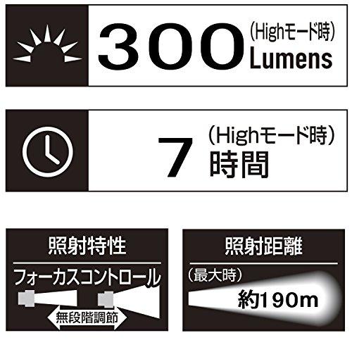 ジェントス LED 懐中電灯 【明るさ300ルーメン/実用点灯7時間/防塵・防滴】 MGシリーズ MG-722D