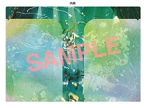 【早期購入特典あり】green(CD)(green Wポケットクリアファイル付)