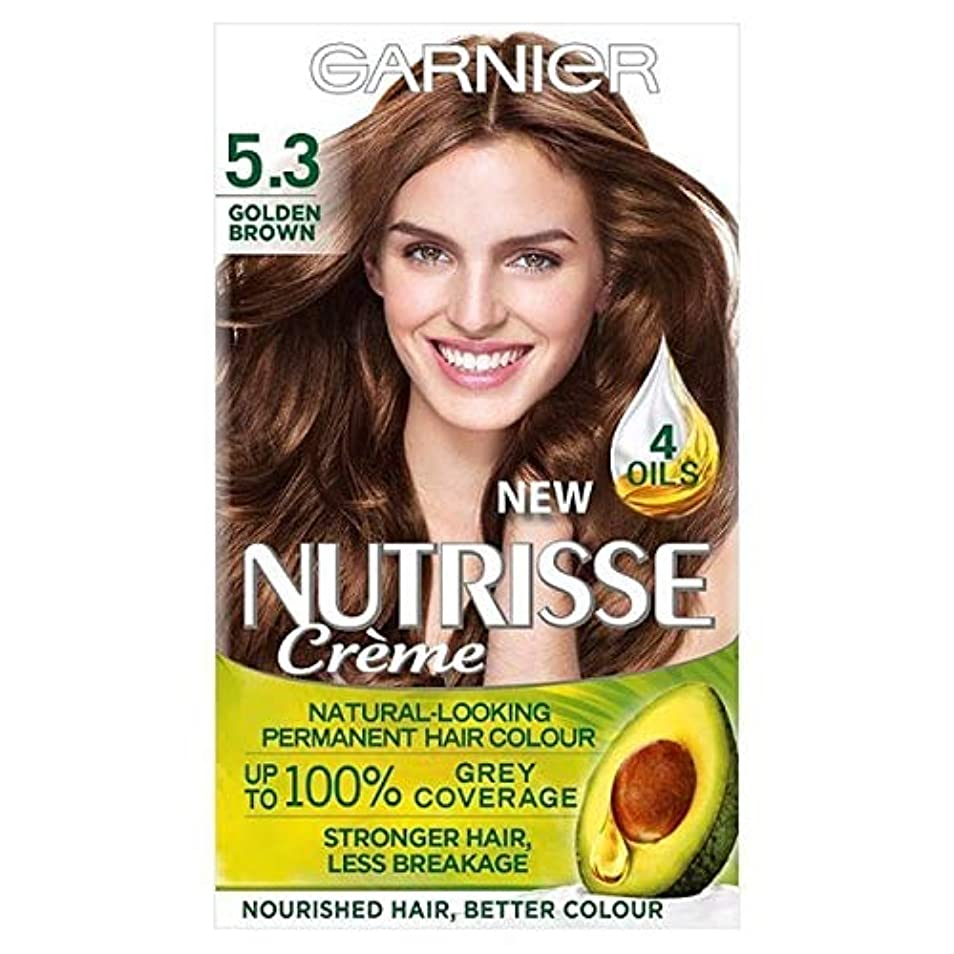 航空だらしないテナント[Garnier ] 5.3キツネ色ガルニエNutrisseパーマネントヘアダイ - Garnier Nutrisse Permanent Hair Dye Golden Brown 5.3 [並行輸入品]
