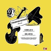 Violin Concerto in D Minor Op. 47