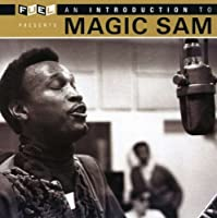 Introduction to Magic Sam